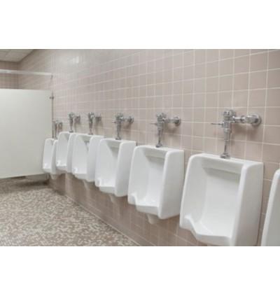McQwin Basic Urinal Sanitizer Liquid